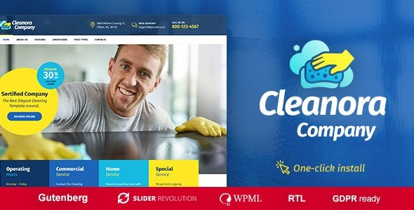 Cleanora - Cleaning Services Theme