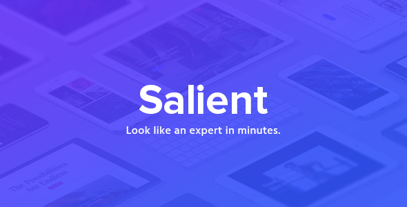 Salient Responsive Multi-Purpose Theme v13.0.4